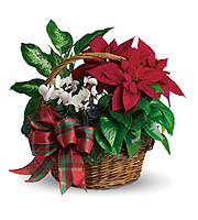 Flowers By Bauers Holiday Homecoming Basket