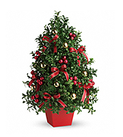 Flowers By Bauers Deck The Halls Tree
