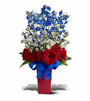 Flowers By Bauers Freedom Fireworks Bouquet