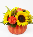 FTD Harvest Traditions Pumpkin $59.99