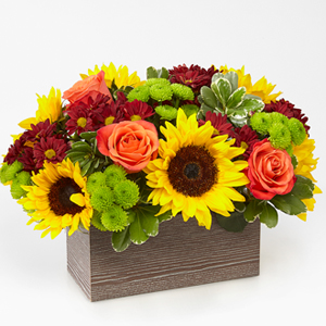 The FTD® Happy Harvest Garden™