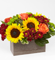 FTD Happy Harvest Garden $69.99