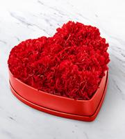 The FTD® Heartfelt™ Carnation Box