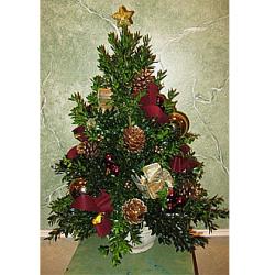 Boxwood Tree Burgandys & Golds