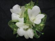 3 Dendrobium Orchid Corsage