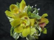 Mini Cymbidium Orchid Corsage