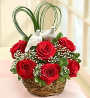 Love Birds Nest of Roses