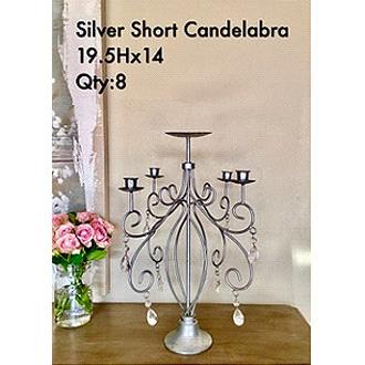 Elegant Short Silver Candelabra 19.5Hx14