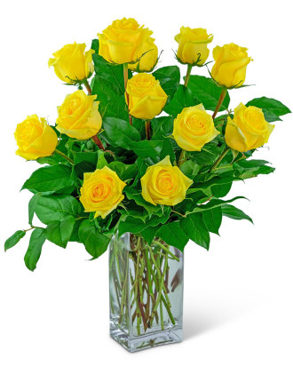 Yellow Roses (12)
