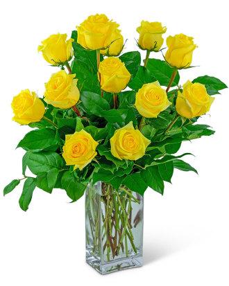 Yellow Roses (12)