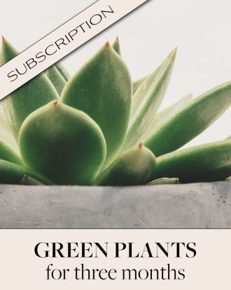 Plant Subscription (3)