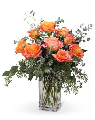 Free Spirit Roses (9)