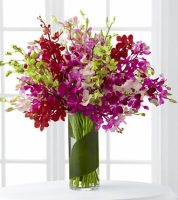 LUXURY DENDROBIUM ORCHIDS ARRANGEMENT