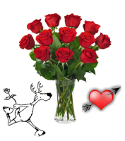 DEAR HUNTERS SPECIAL Dozen Red Roses