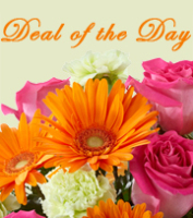 Deal of the Day Flower Bouquet