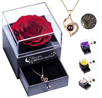 Sympathy Eternal Rose & I Love You Necklace in 100 Languages