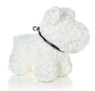 ADORABLE WHITE FOREVER ROSE DOG