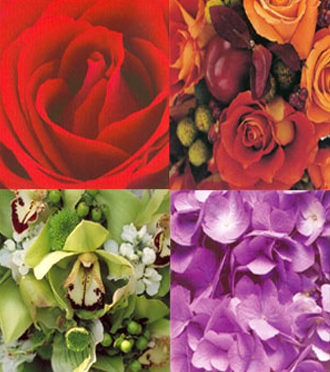 Send colorful flower bouquets for same day delivery in Grand Rapids, Holland, Rockford, Ada, Walker and Byron Center with Sunnyslope Floral