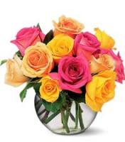Send dozen roses in contemporary style in Grand Rapids Metro area, Sunnyslope Floral, the local rose delivery experts