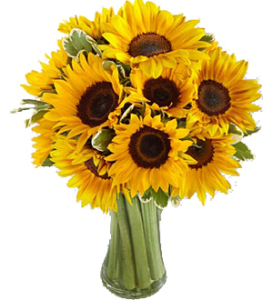 Sunflower Surprise  Bouquet
