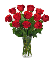 One Dozen Red Roses - Send Your Love Today!