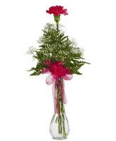 Single Carnation Bud Vase