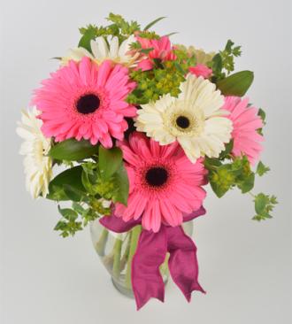 Schnucks Florist And Gifts Sweet Daisies Saint Louis Mo 63132 Ftd