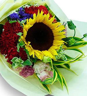 Seasonal Mixed Cut Flowers