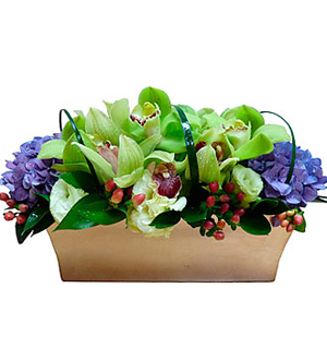 Arrangement in Container