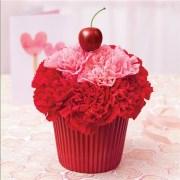 Lots of Love Cupcake