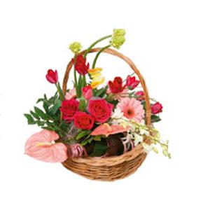 Basket Arrangement \