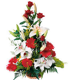 High Arrangement of Cut Flowers