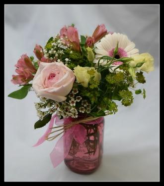 Bayport\'s Best - Pink Sorbet