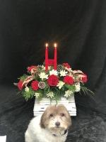 Candle Light Christmas
