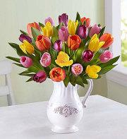 Fresh Spring Tulip Pitcher