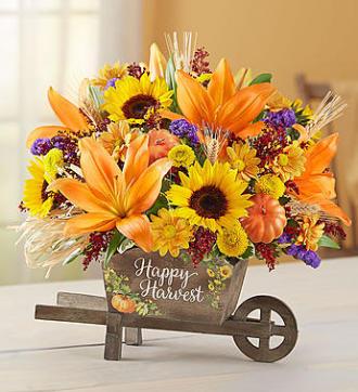Happy Harvest Wheelbarrow