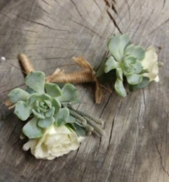 Succulent Corsage and Boutonniere set