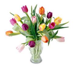 Carnival Bouquet