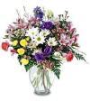 Wildflower Sampler