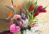 Hawaiian Tropical Bouquet (Shipped by FedEx)