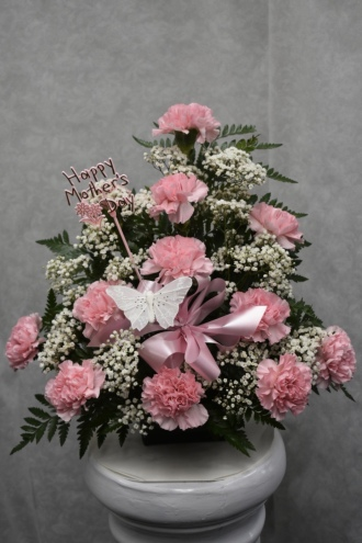 mothers day pink carnation arr