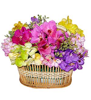 Colorful Basket Arrangement with Orchids