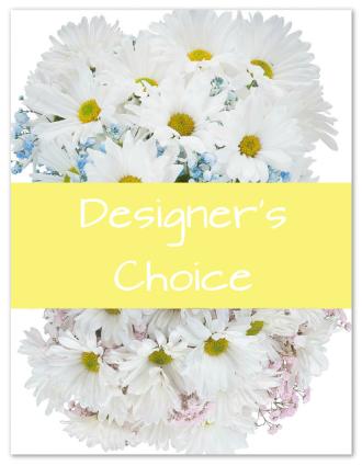 Designer\'s Choice - New Baby