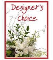 Designer's Choice - Winter