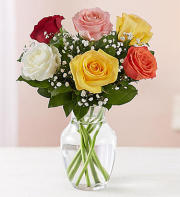 6 Assorted Roses Vase