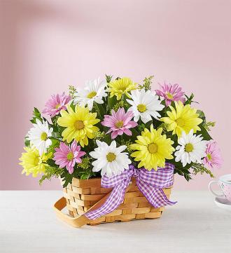 Springtime Wishes