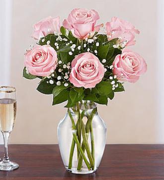 6 Pink Roses Vase