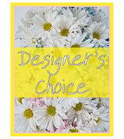 Designer's Choice New Baby