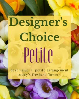 Designer\'s Choice - Petite