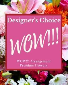 Designer's Choice - WOW!